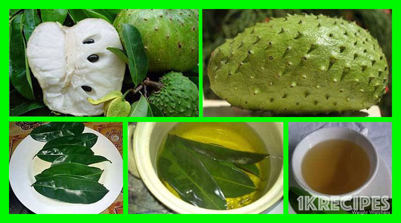 how-to-use-the-leaves-of-soursop-to-kill-cancer-cells